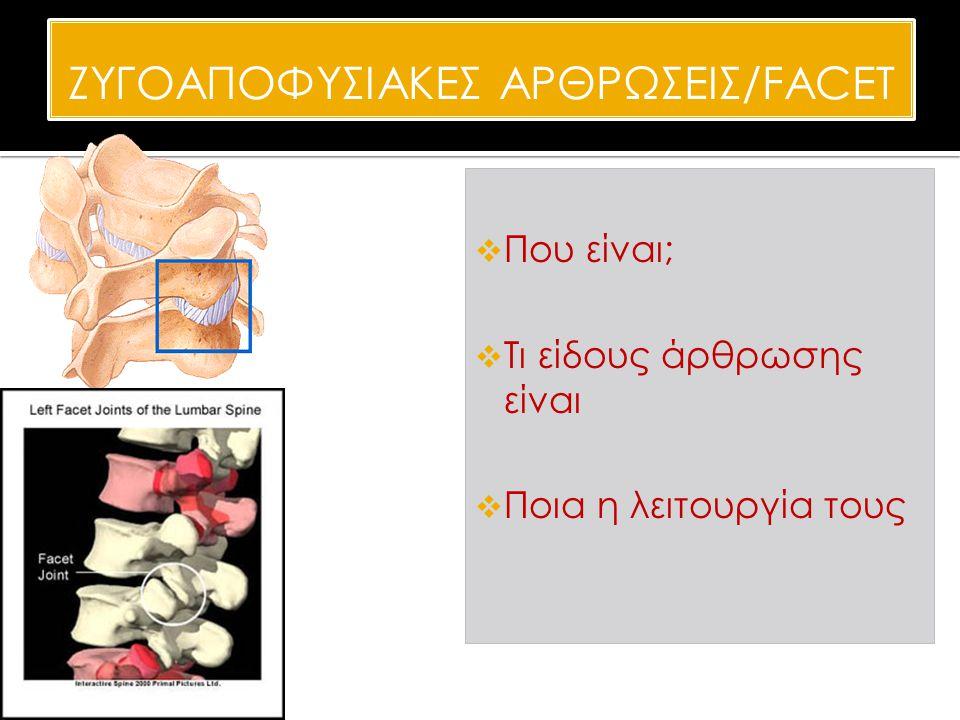ΖΥΓOΑΠΟΦΥΣΙΑΚΕΣ ΑΡΘΡΩΣΕΙΣ/FACET