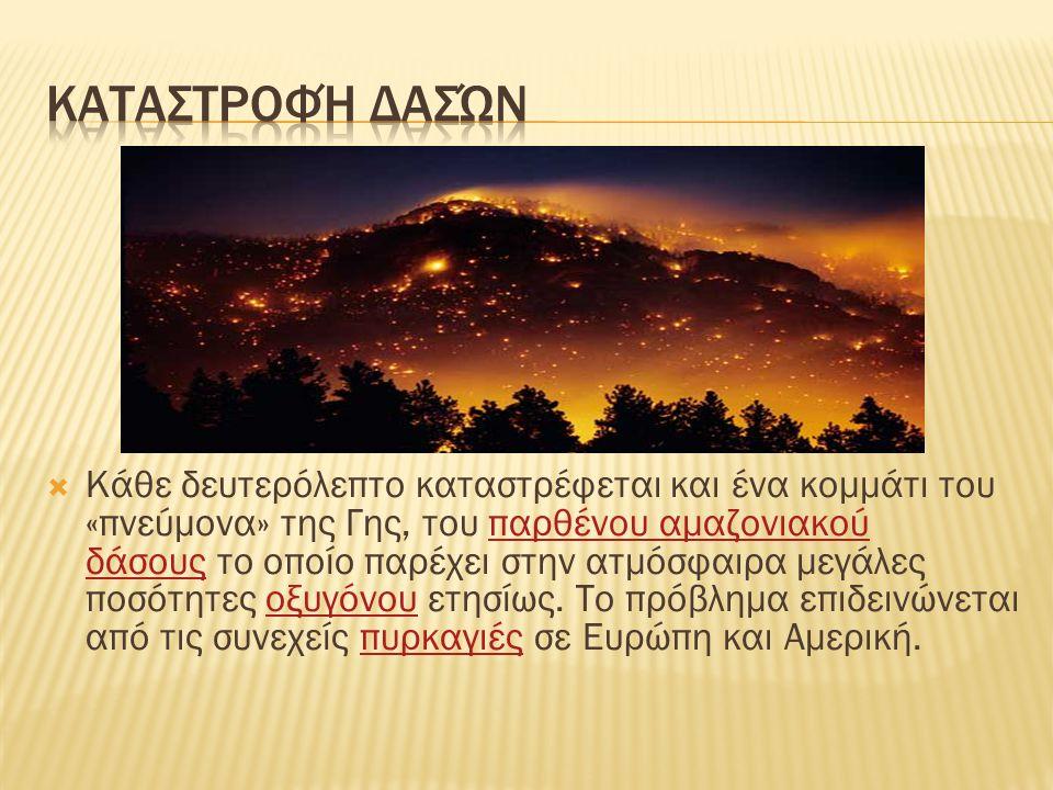 Καταστροφή δασών