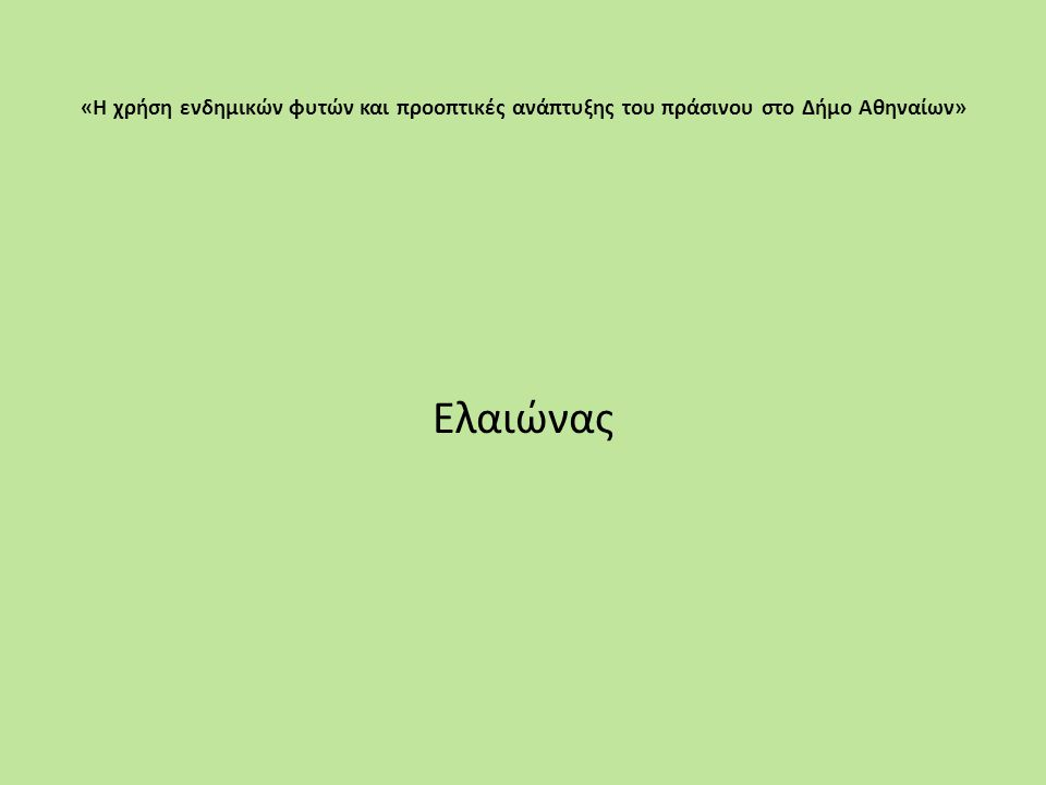 «Η χρήση ενδημικών φυτών και προοπτικές ανάπτυξης του πράσινου στο Δήμο Αθηναίων»