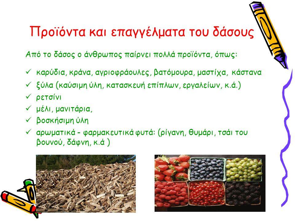 Προϊόντα και επαγγέλματα του δάσους
