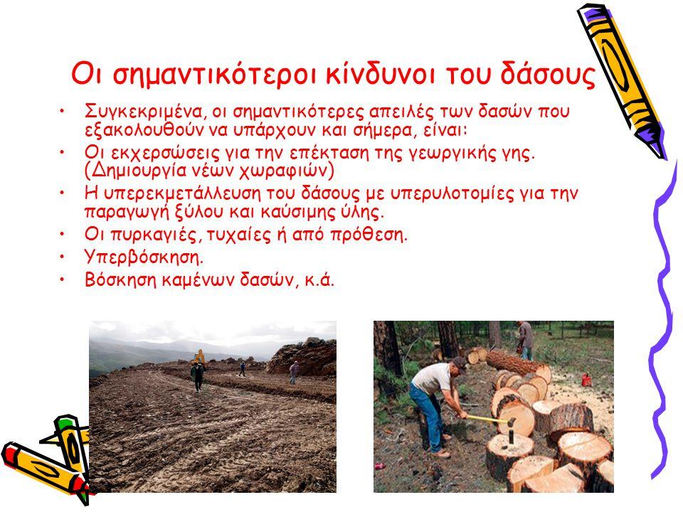 Οι σημαντικότεροι κίνδυνοι του δάσους