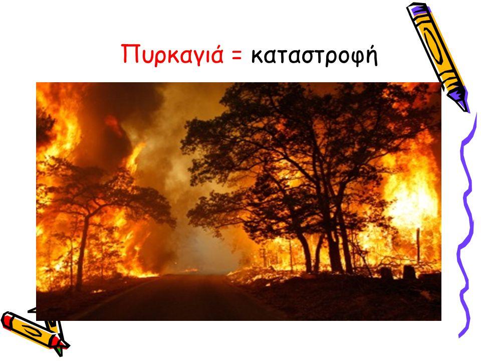 Πυρκαγιά = καταστροφή