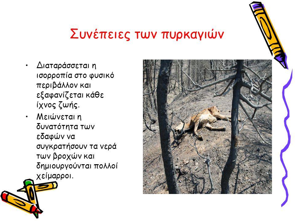 Συνέπειες των πυρκαγιών