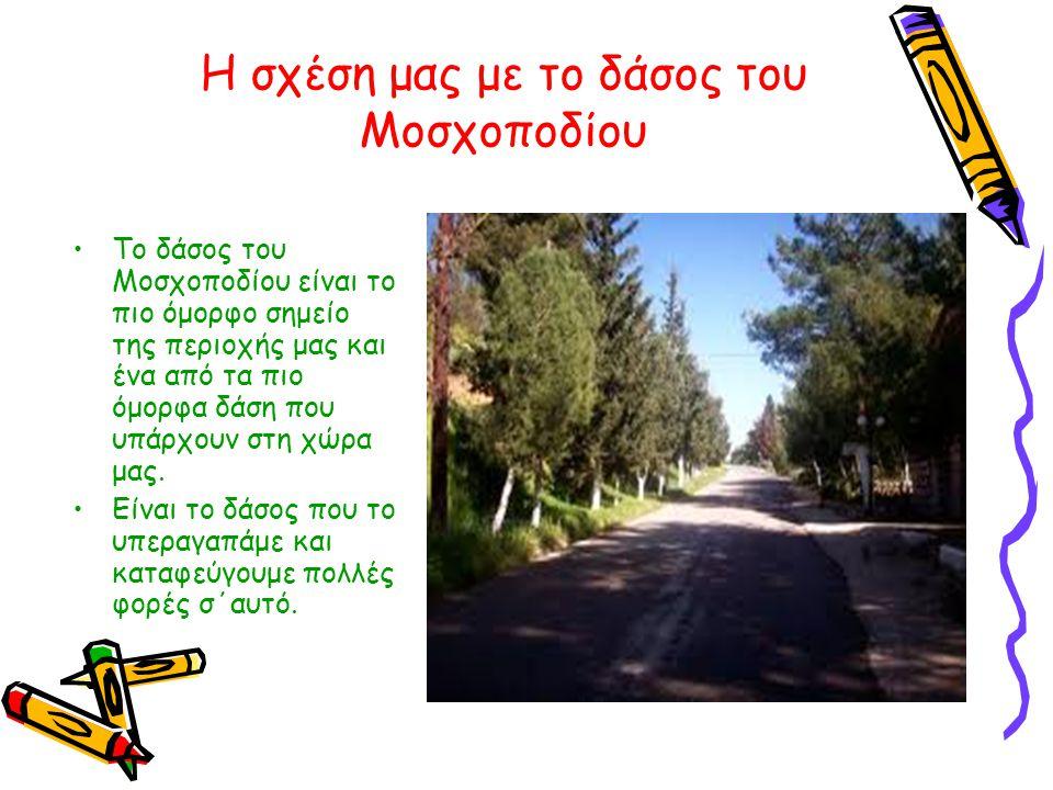 Η σχέση μας με το δάσος του Μοσχοποδίου