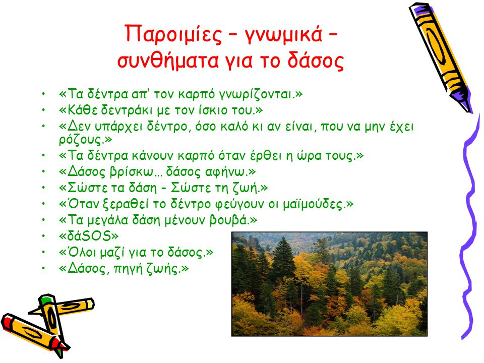 Παροιμίες – γνωμικά – συνθήματα για το δάσος