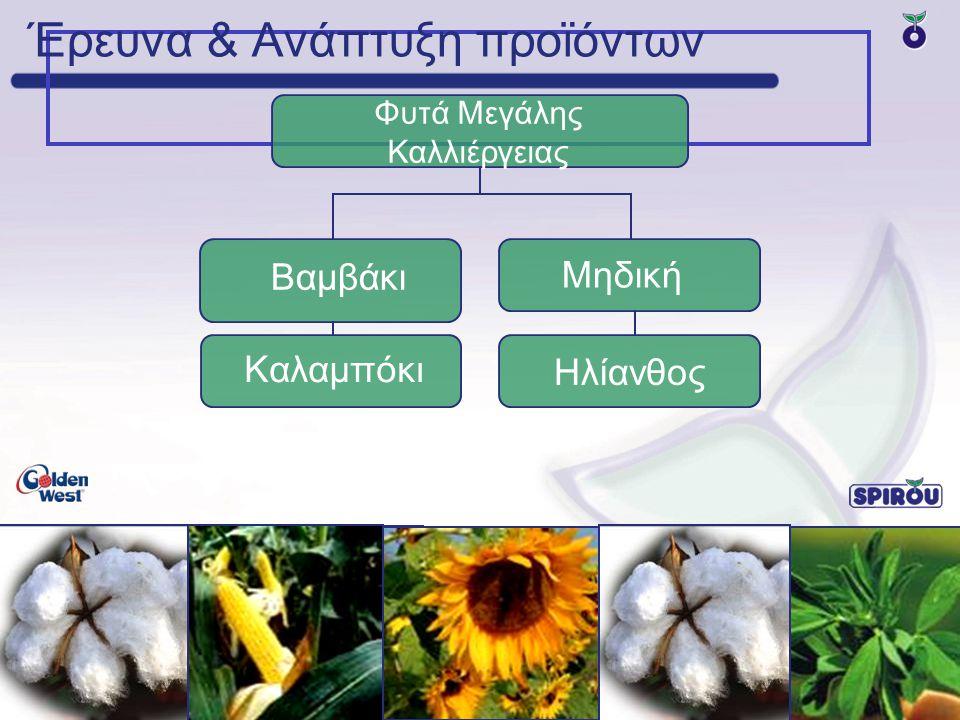 Έρευνα & Ανάπτυξη προϊόντων