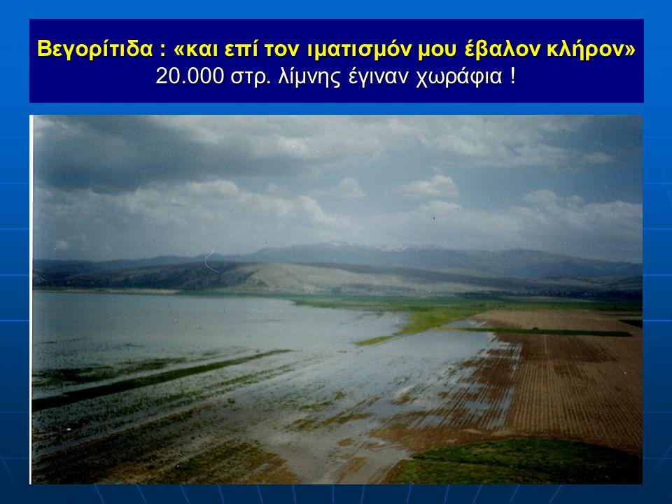 Βεγορίτιδα : «και επί τον ιματισμόν μου έβαλον κλήρον» 20. 000 στρ