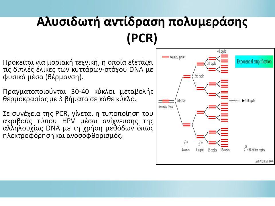 Αλυσιδωτή αντίδραση πολυμεράσης (PCR)