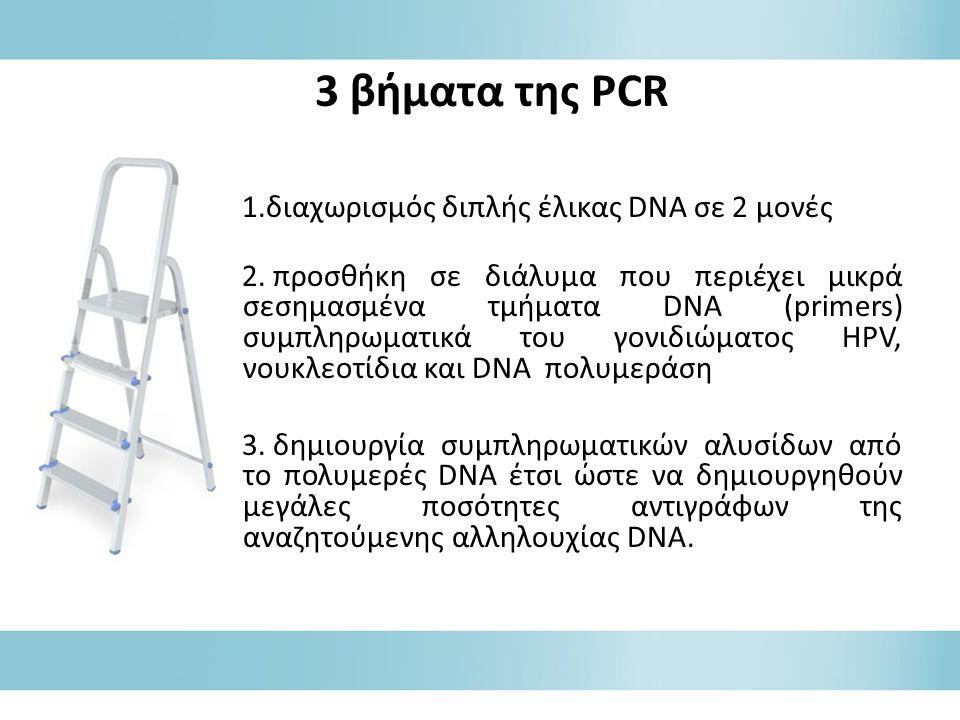 3 βήματα της PCR διαχωρισμός διπλής έλικας DNA σε 2 μονές