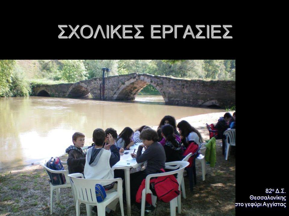 ΣΧΟΛΙΚΕΣ ΕΡΓΑΣΙΕΣ 82ο Δ.Σ. Θεσσαλονίκης στο γεφύρι Αγγίστας