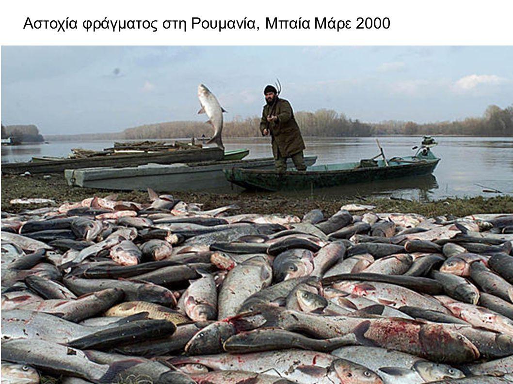 Αστοχία φράγματος στη Ρουμανία, Μπαία Μάρε 2000