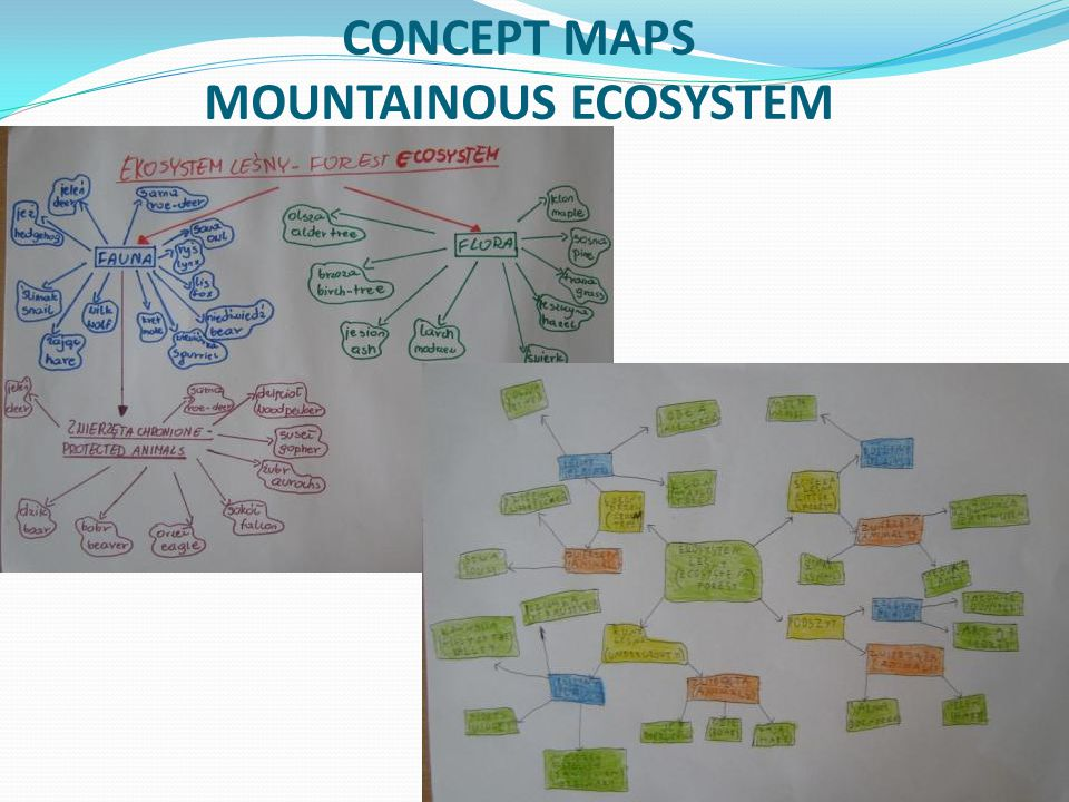 CONCEPT MAPS MOUNTAINOUS ECOSYSTEM