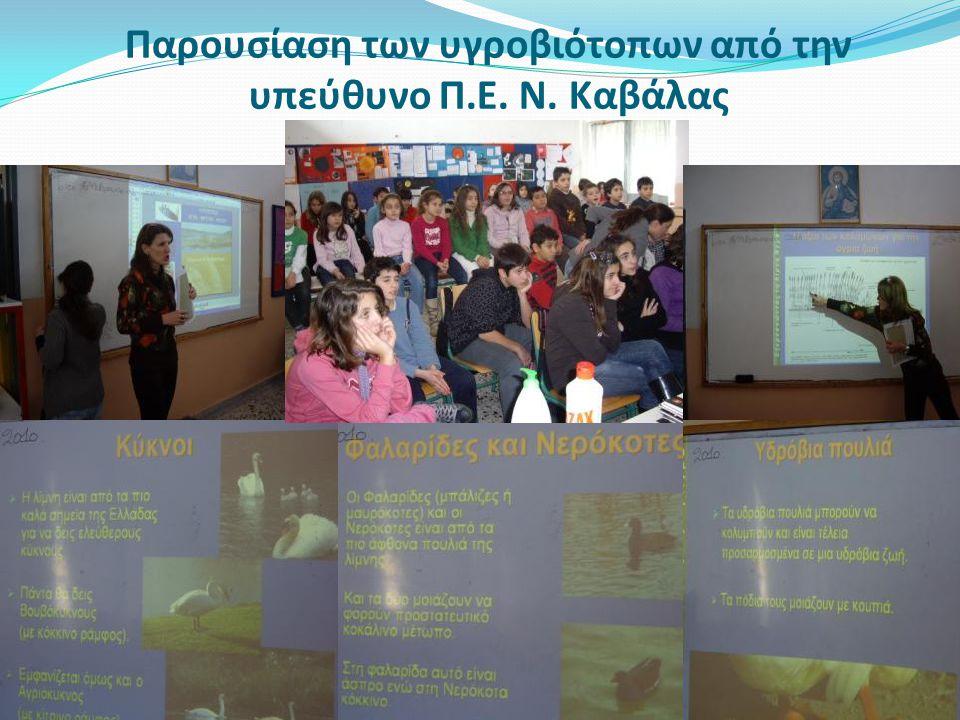 Παρουσίαση των υγροβιότοπων από την υπεύθυνο Π.Ε. Ν. Καβάλας