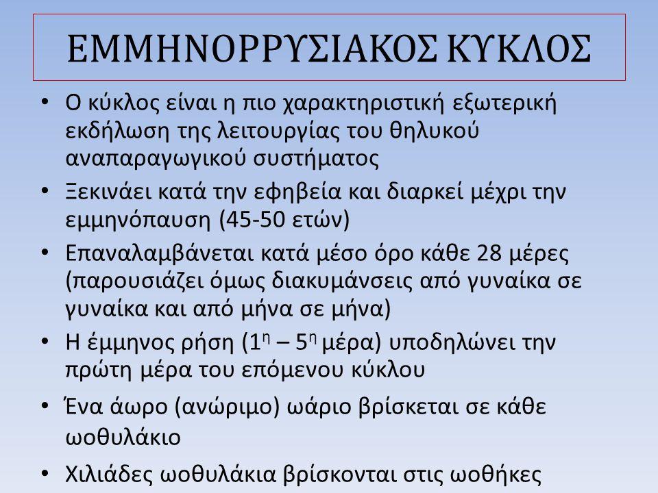 ΕΜΜΗΝΟΡΡΥΣΙΑΚΟΣ ΚΥΚΛΟΣ