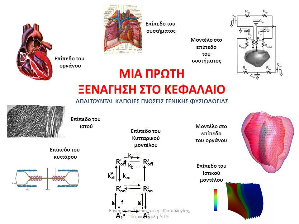 Εργαστήριο Πειραματικής Φυσιολογίας, Ιατρική Σχολή ΑΠΘ