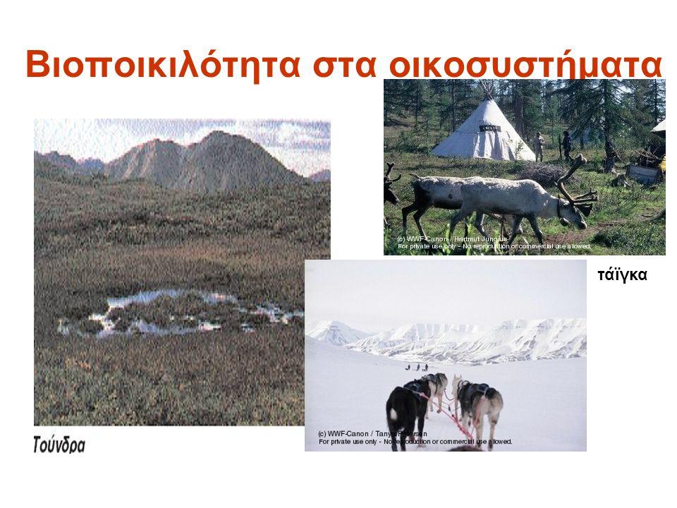 Βιοποικιλότητα στα οικοσυστήματα
