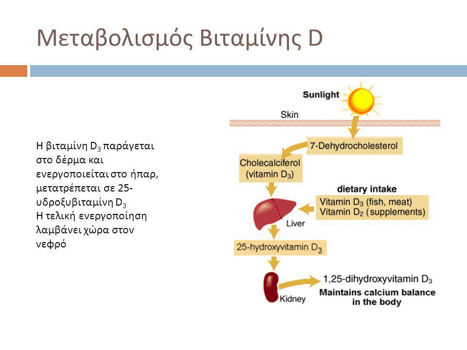 Μεταβολισμός Βιταμίνης D