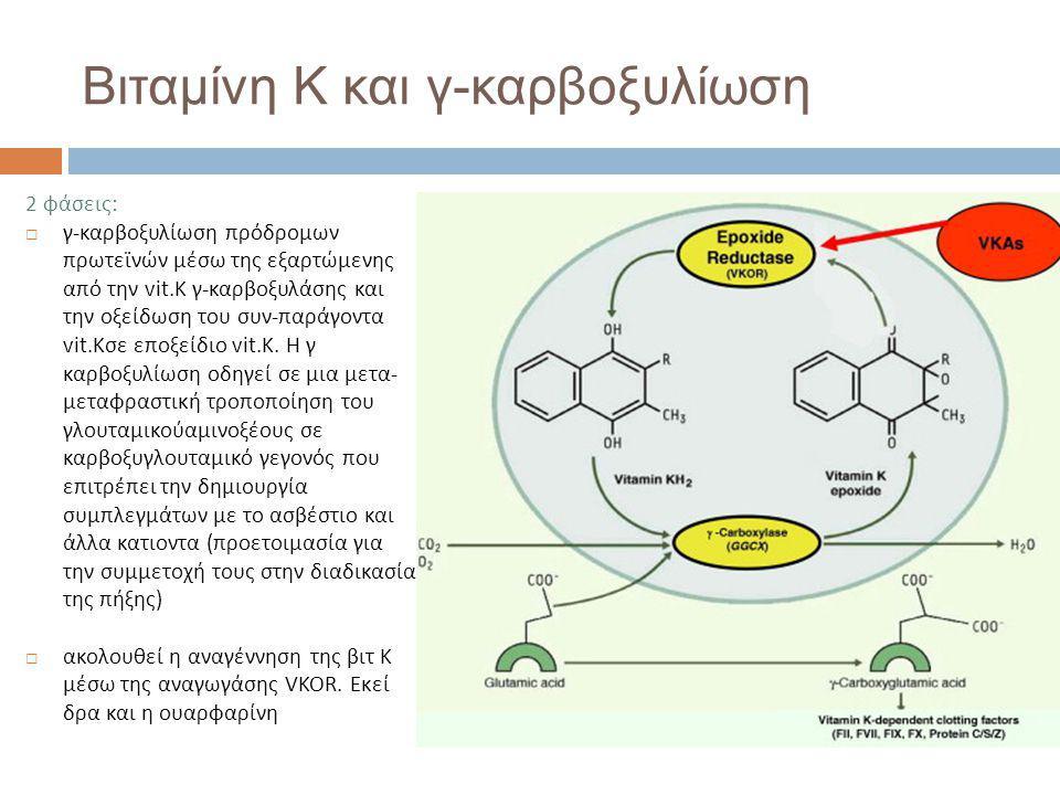 Βιταμίνη Κ και γ-καρβοξυλίωση