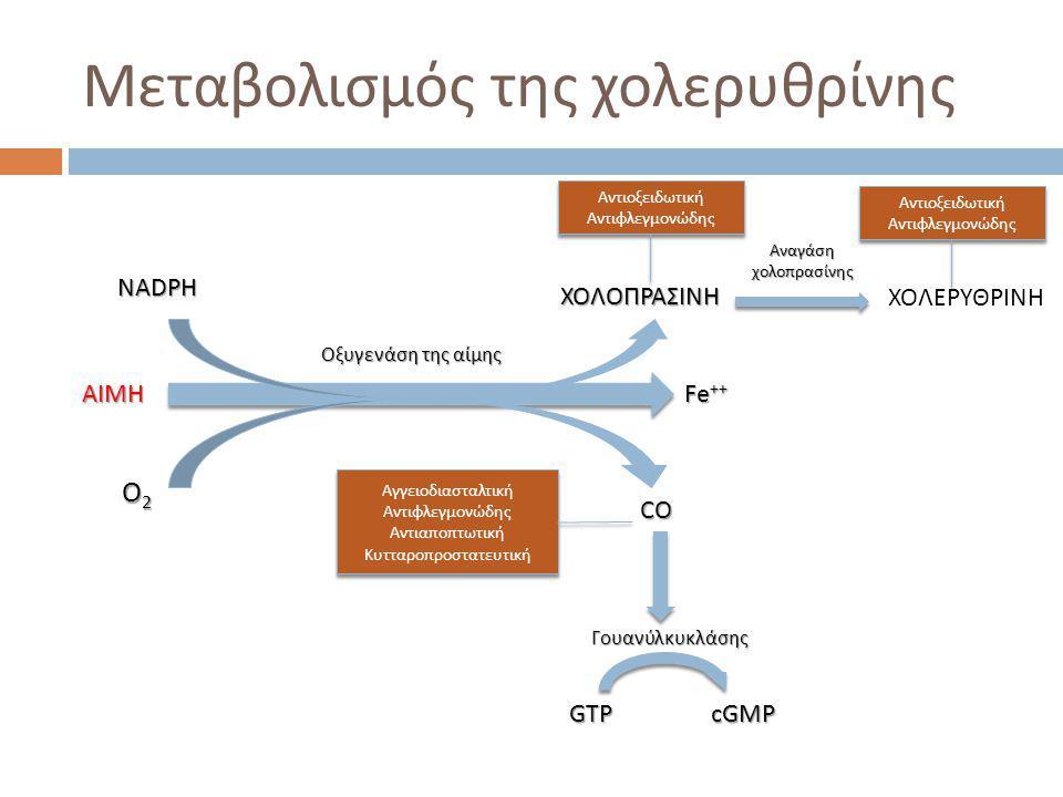 Μεταβολισμός της χολερυθρίνης