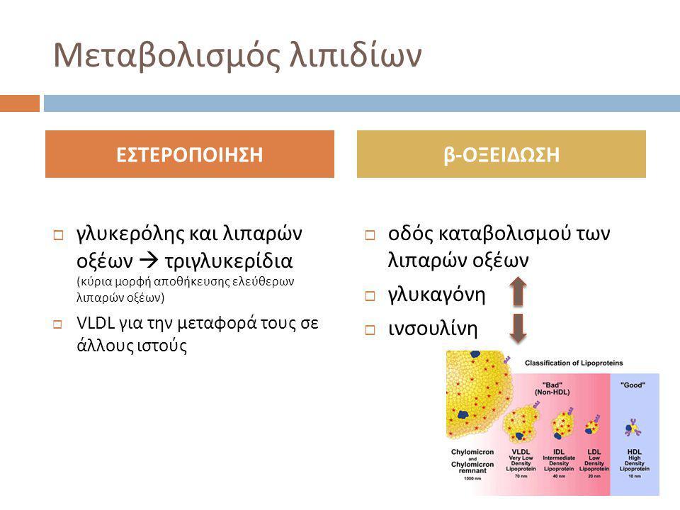 Μεταβολισμός λιπιδίων