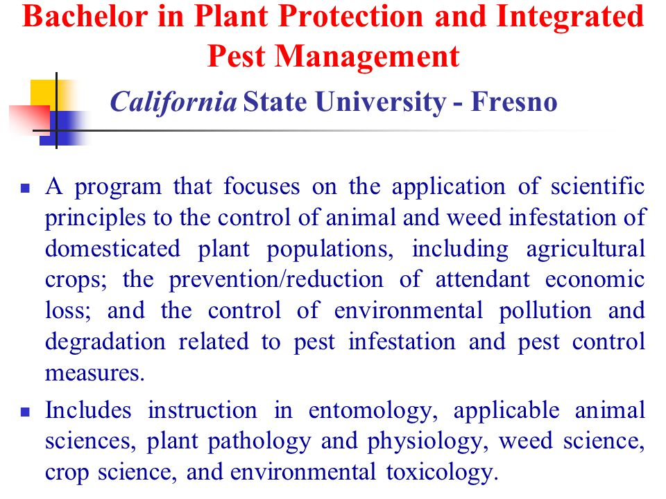 Bachelor in Plant Protection and Integrated Pest Management California State University - Fresno