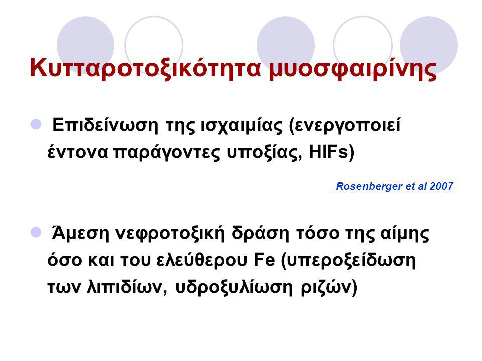 Κυτταροτοξικότητα μυοσφαιρίνης