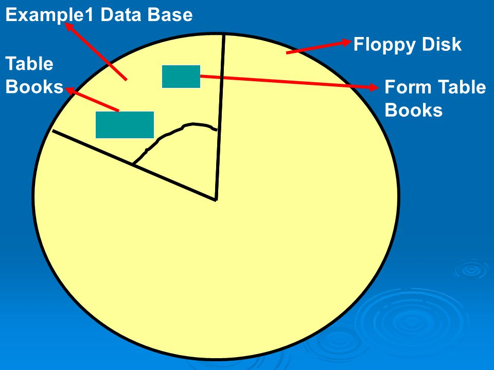 Example1 Data Base Floppy Disk Table Books Form Table Books