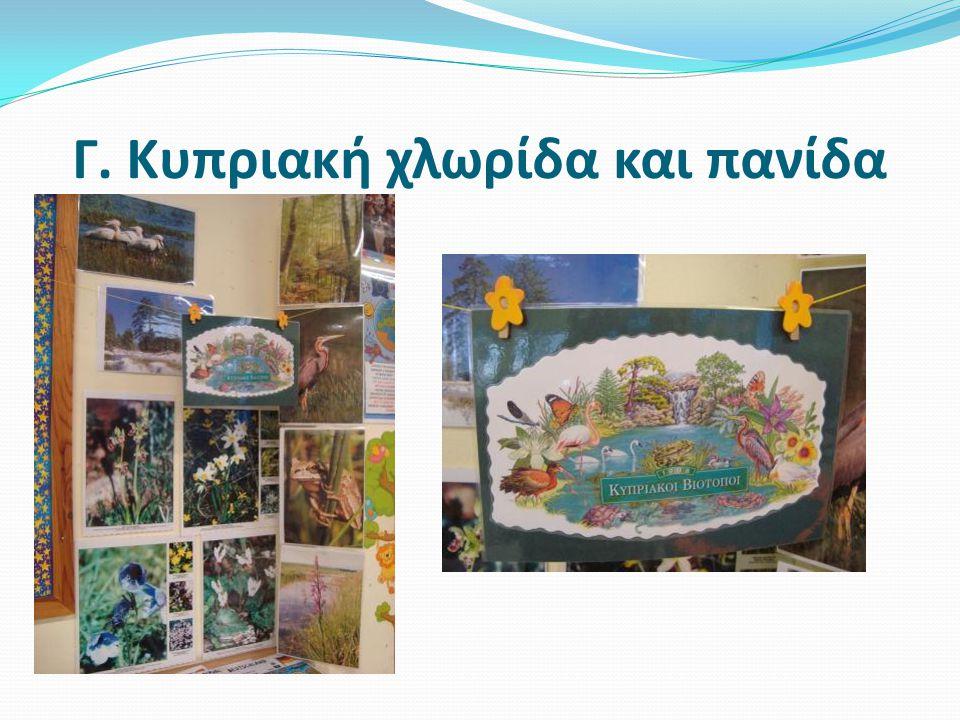 Γ. Κυπριακή χλωρίδα και πανίδα