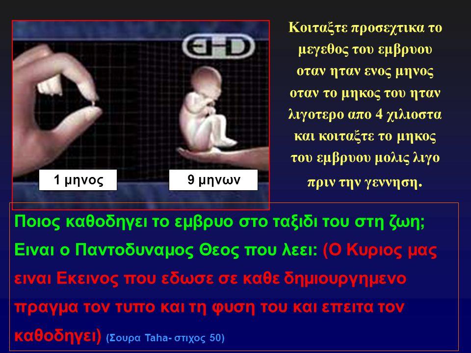 Ποιος καθοδηγει το εμβρυο στο ταξιδι του στη ζωη;