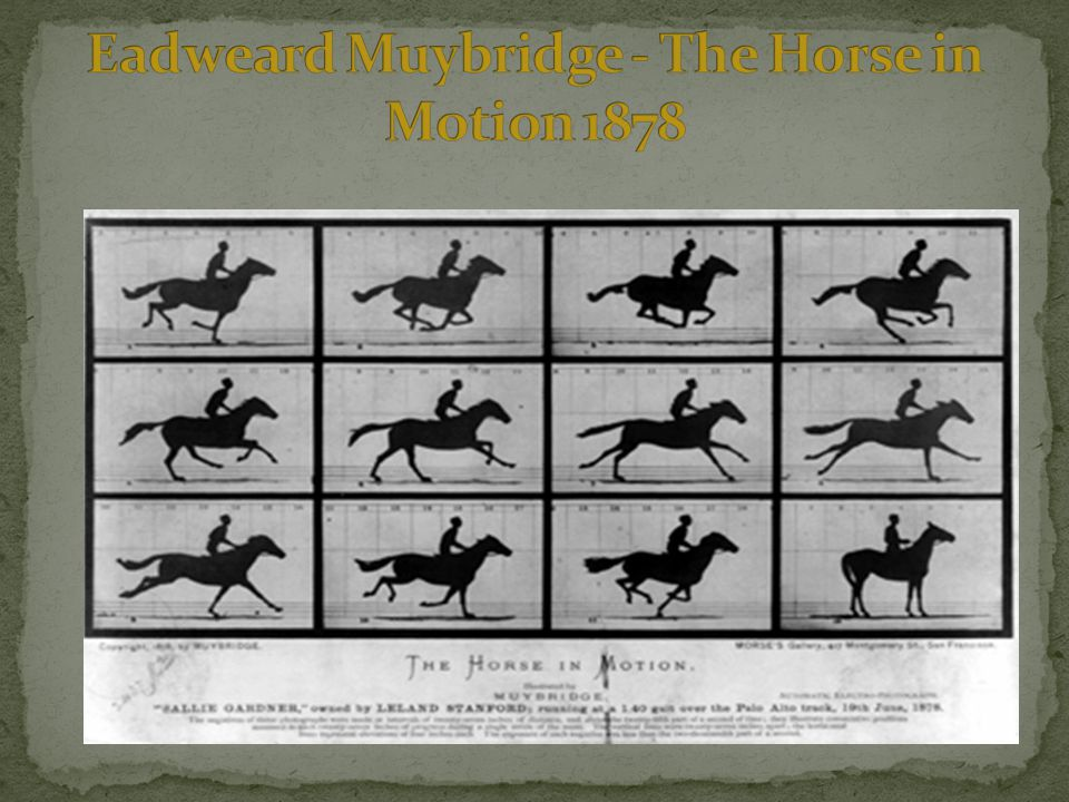 Eadweard Muybridge - The Horse in Motion 1878