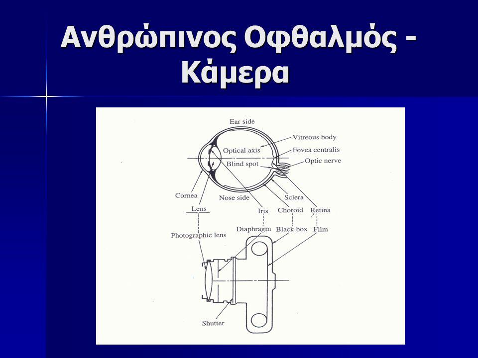 Ανθρώπινος Οφθαλμός - Κάμερα
