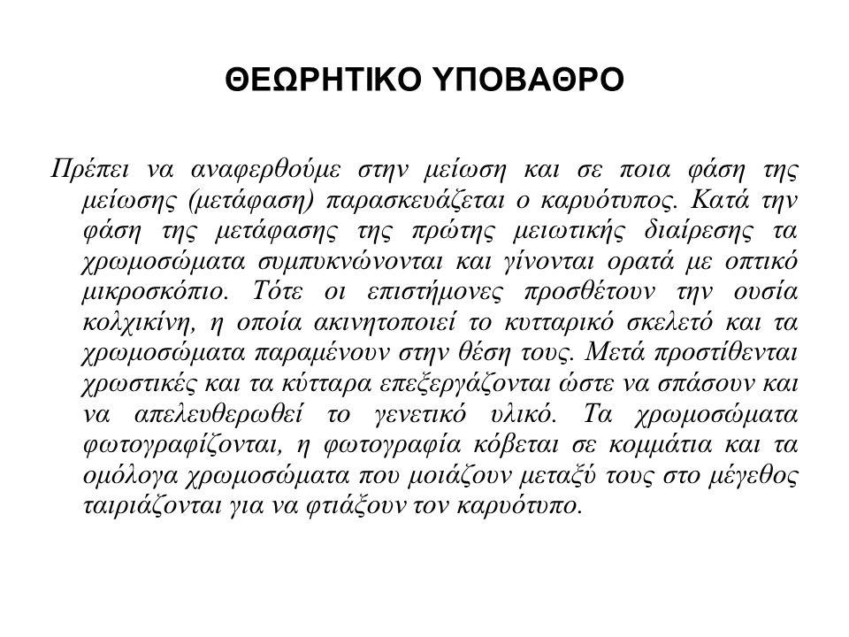 ΘΕΩΡΗΤΙΚΟ ΥΠΟΒΑΘΡΟ