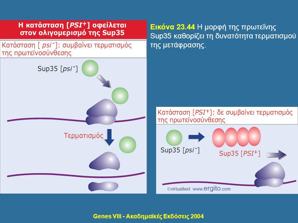 Genes VIII - Ακαδημαϊκές Εκδόσεις 2004