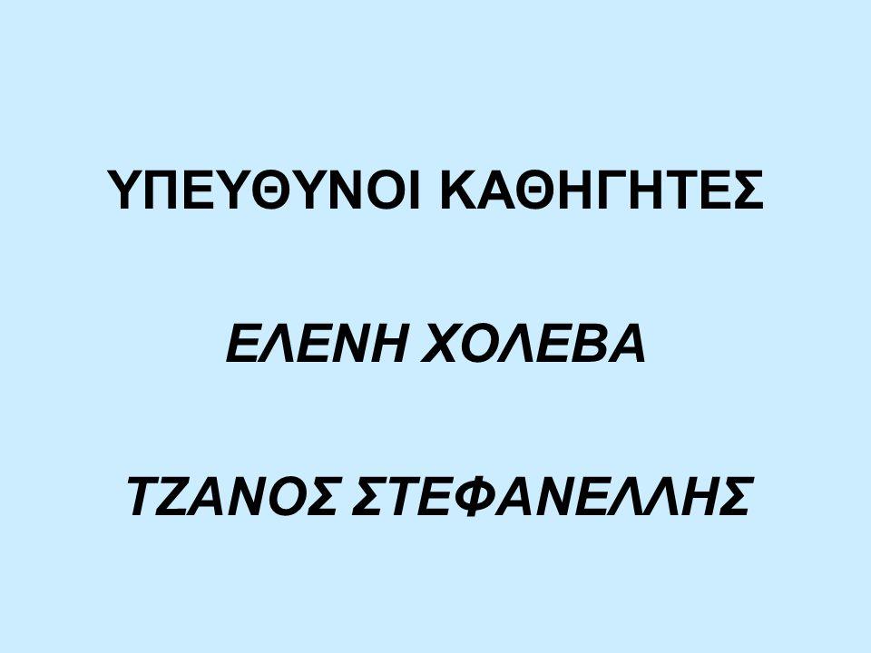 ΥΠΕΥΘΥΝΟΙ ΚΑΘΗΓΗΤΕΣ ΕΛΕΝΗ ΧΟΛΕΒΑ ΤΖΑΝΟΣ ΣΤΕΦΑΝΕΛΛΗΣ