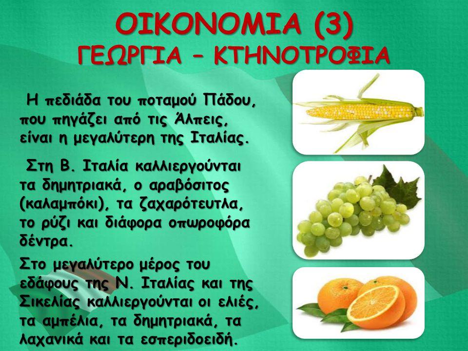 ΟΙΚΟΝΟΜΙΑ (3) ΓΕΩΡΓΙΑ – ΚΤΗΝΟΤΡΟΦΙΑ