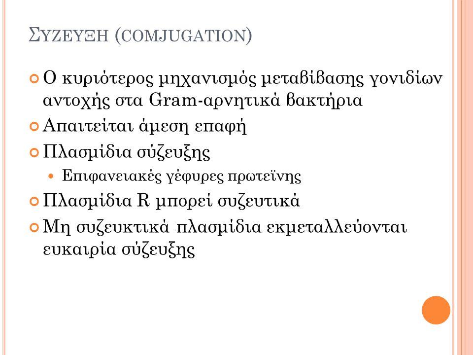 Συζευξη (comjugation)