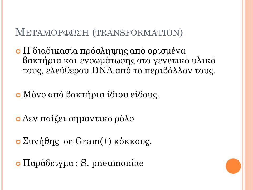 Μεταμορφωση (transformation)
