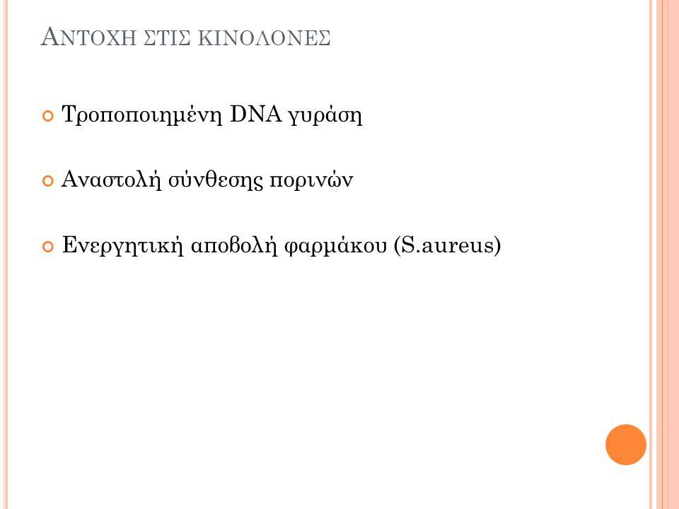 Αντοχη στισ κινολονεσ Τροποποιημένη DNA γυράση
