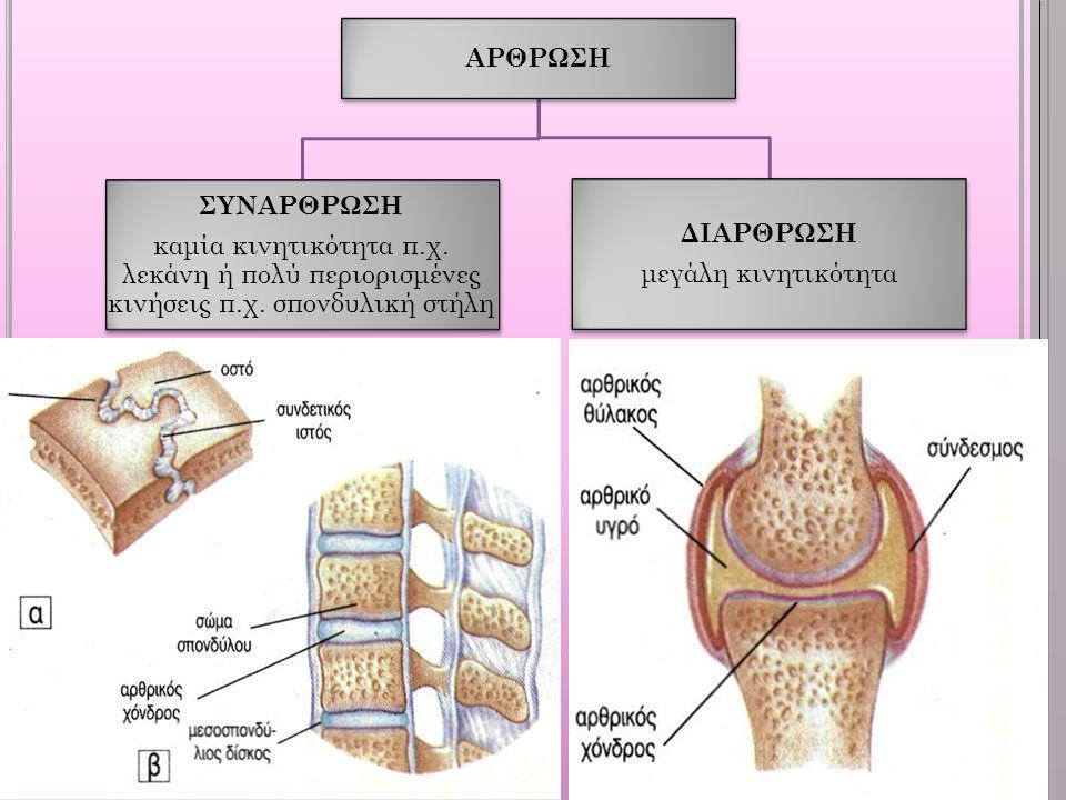 ΑΡΘΡΩΣΗ ΣΥΝΑΡΘΡΩΣΗ. καμία κινητικότητα π.χ. λεκάνη ή πολύ περιορισμένες κινήσεις π.χ. σπονδυλική στήλη.
