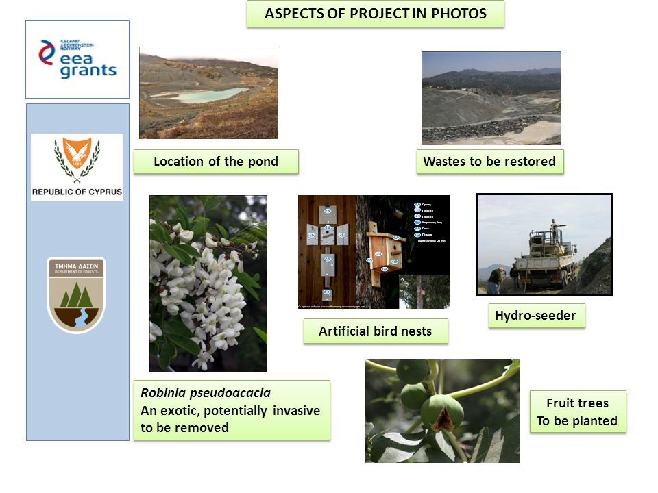 ASPECTS OF PROJECT IN PHOTOS