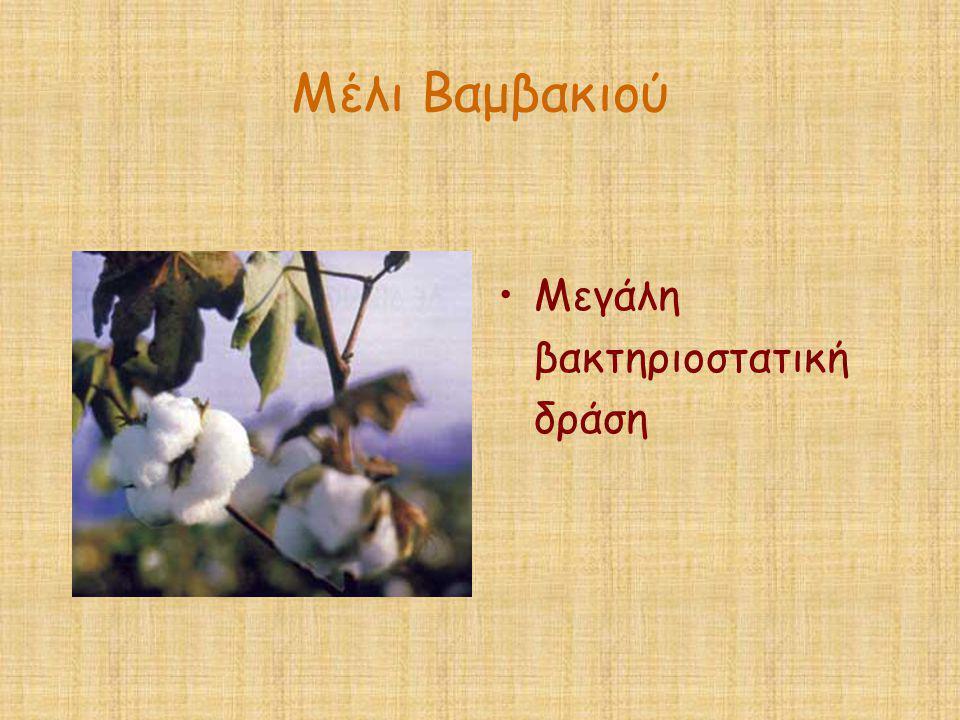 Μέλι Βαμβακιού Μεγάλη βακτηριοστατική δράση