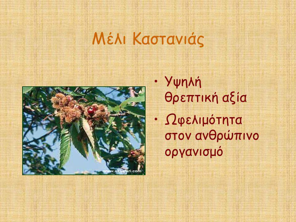 Μέλι Καστανιάς Υψηλή θρεπτική αξία