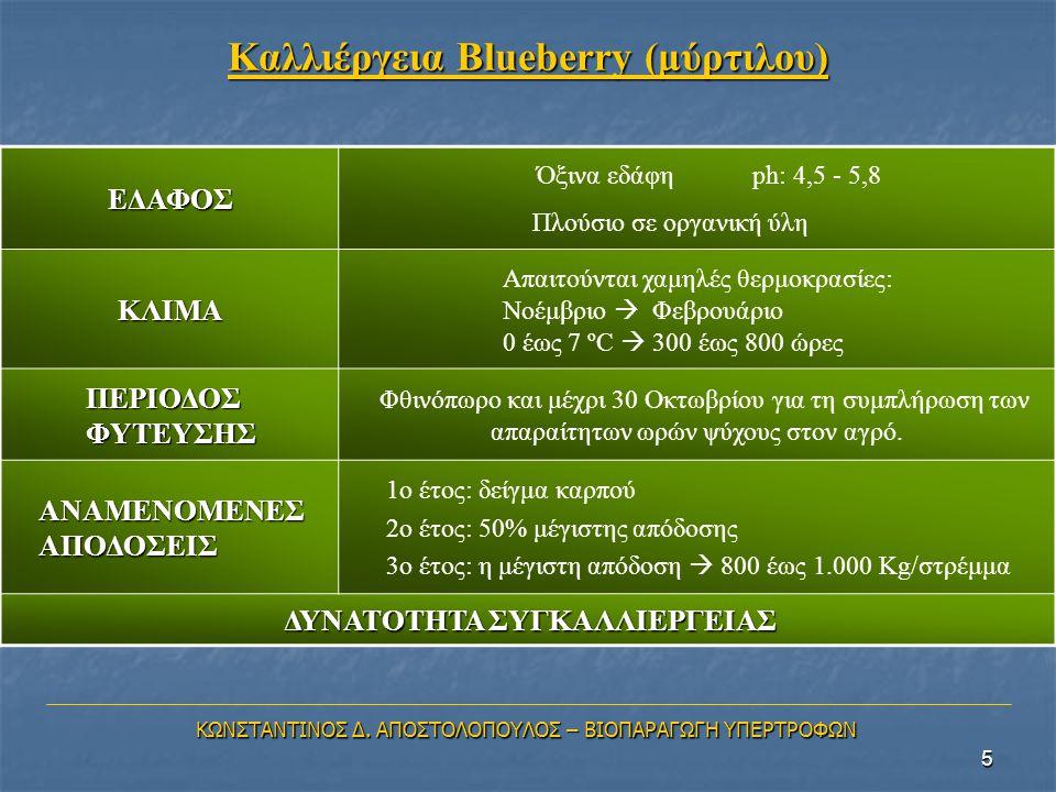 Καλλιέργεια Blueberry (μύρτιλου)