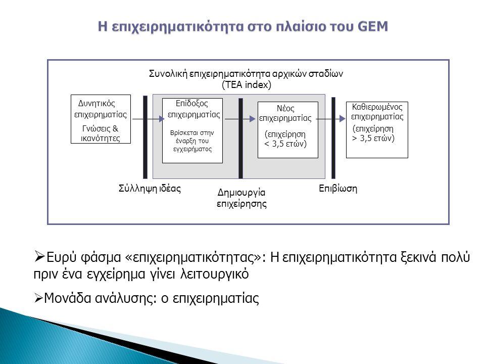 Η επιχειρηματικότητα στο πλαίσιο του GEM
