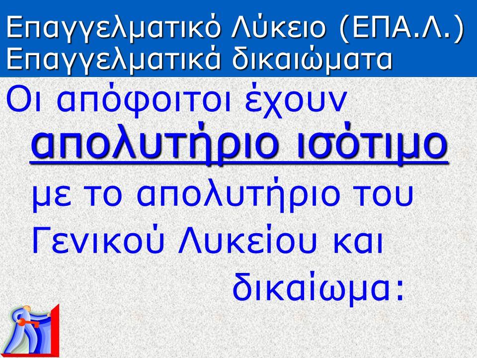 Επαγγελματικό Λύκειο (ΕΠΑ.Λ.) Επαγγελματικά δικαιώματα