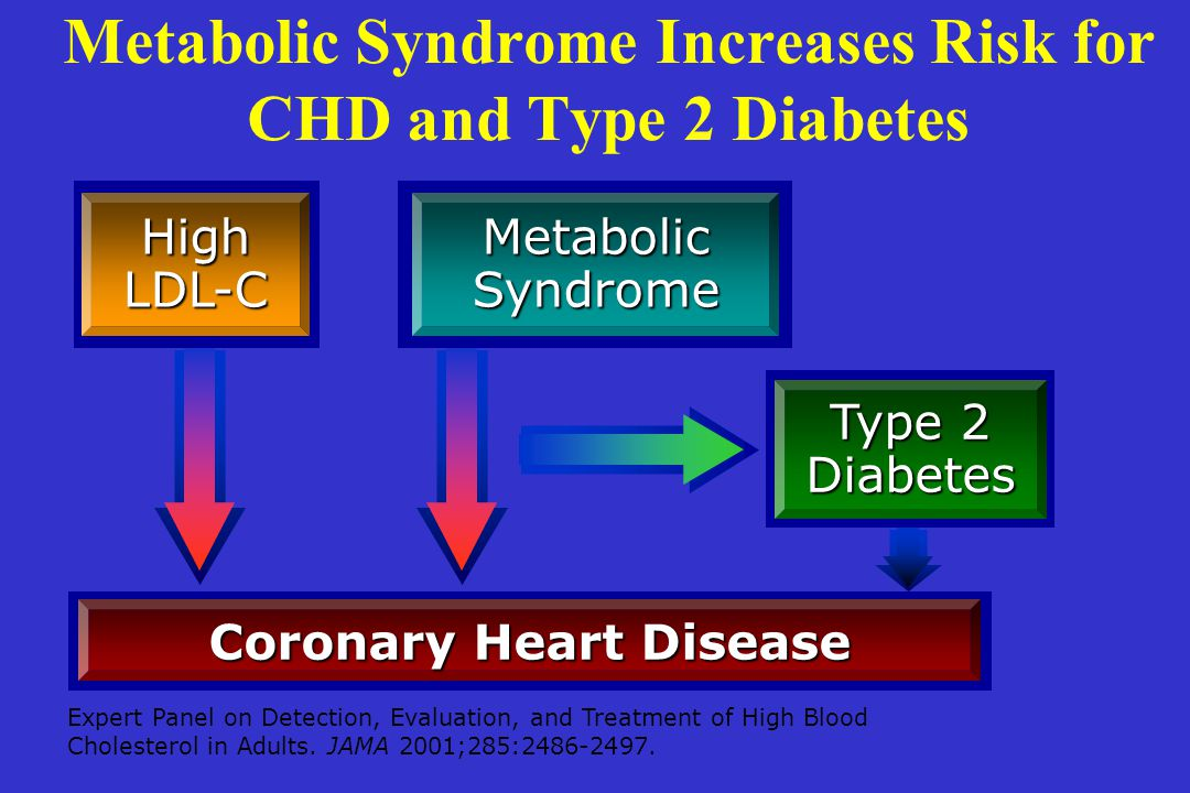 Metabolic Syndrome Increases Risk for CHD and Type 2 Diabetes