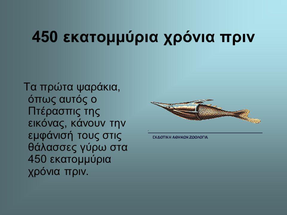450 εκατομμύρια χρόνια πριν