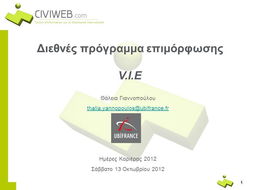 Διεθνές πρόγραμμα επιμόρφωσης V.I.E