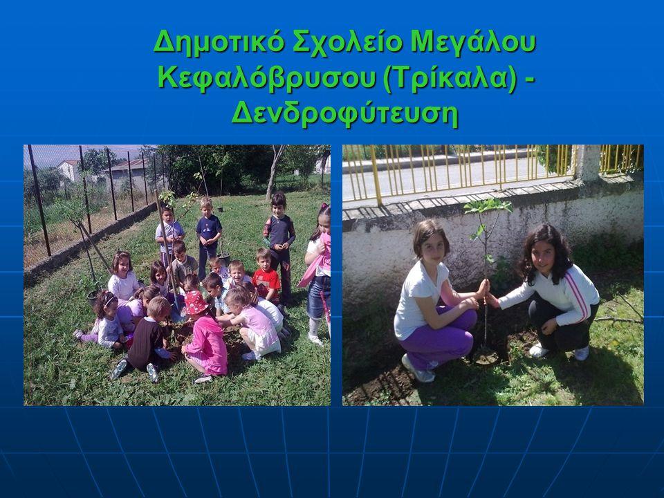 Δημοτικό Σχολείο Μεγάλου Κεφαλόβρυσου (Τρίκαλα) -Δενδροφύτευση