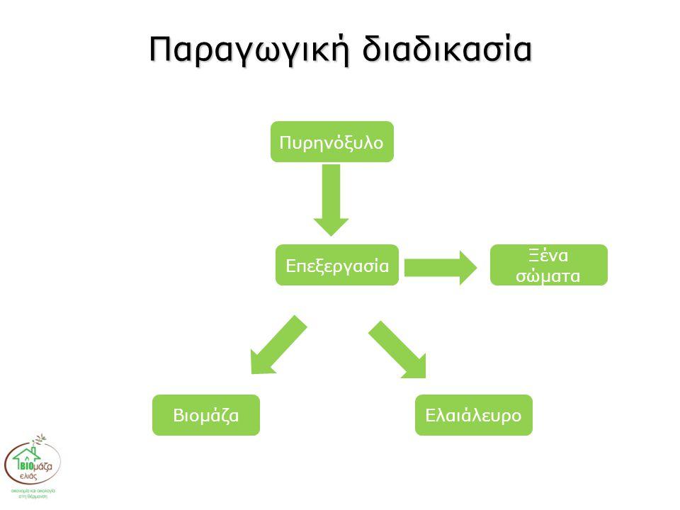 Παραγωγική διαδικασία